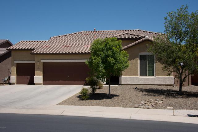12558 N Green Oak Drive, Marana, AZ 85653 (#21812435) :: The Josh Berkley Team