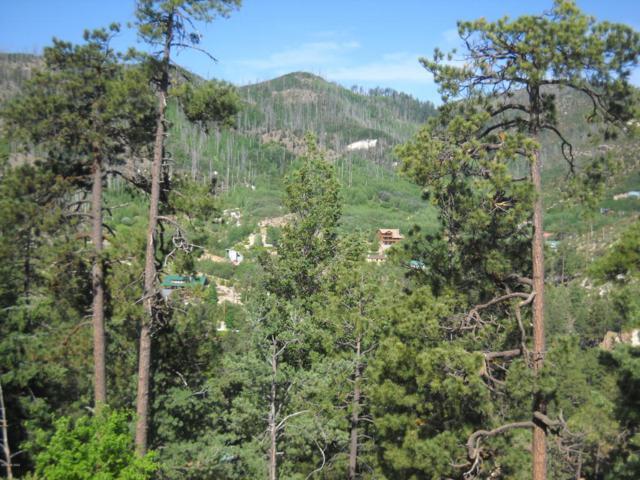 12680 N Ray Avenue #13, Mt. Lemmon, AZ 85619 (#21812774) :: Long Realty Company