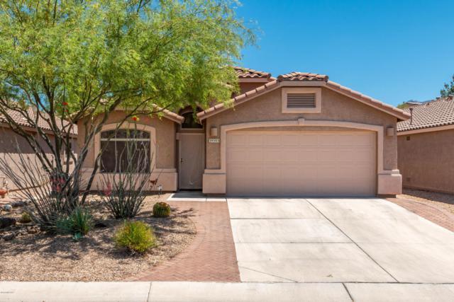 39503 S Old Arena Drive, Tucson, AZ 85739 (#21812886) :: RJ Homes Team