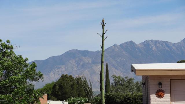 756 W Rio San Pedro, Green Valley, AZ 85614 (#21813461) :: My Home Group - Tucson