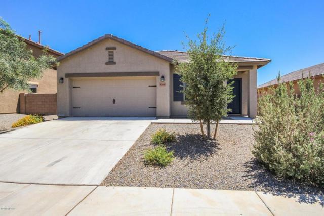 8265 W Razorbill Drive, Tucson, AZ 85757 (#21813686) :: My Home Group - Tucson