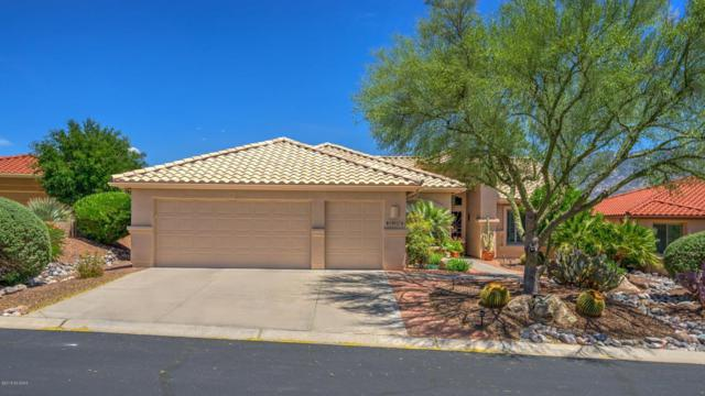 39057 S Riverwood Court, Tucson, AZ 85739 (#21813759) :: Long Realty - The Vallee Gold Team