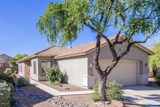 8039 W Cottonwood Wash Way, Tucson, AZ 85743 (#21813773) :: The Josh Berkley Team