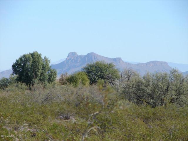 17866 W Lickskillet Lane #15, Marana, AZ 85653 (#21813862) :: Long Realty Company