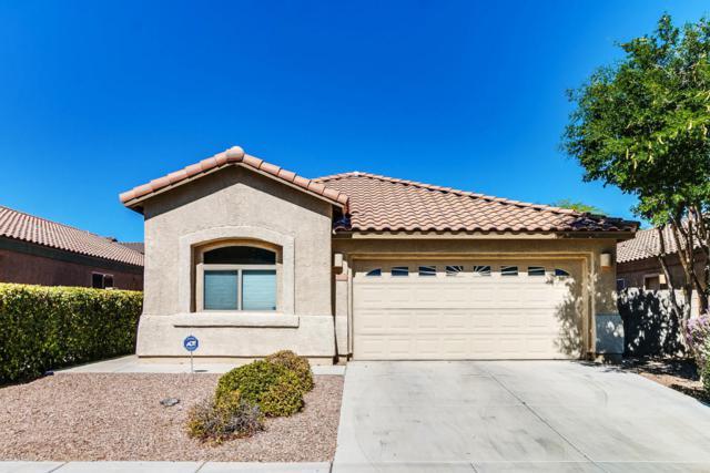 7976 S Fenway Drive, Tucson, AZ 85756 (#21814114) :: The Josh Berkley Team