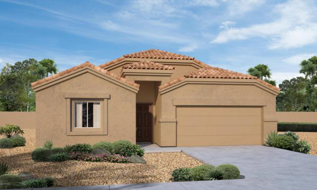 12904 N Benoni Court, Marana, AZ 85653 (#21814193) :: Realty Executives Tucson Elite