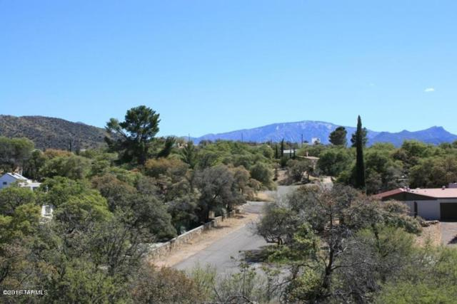 TBD W Linda Vista Road #1, Oracle, AZ 85623 (#21814251) :: Long Realty - The Vallee Gold Team