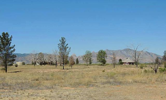 2 Lots On Dale Road #1, Pearce, AZ 85625 (#21814256) :: The KMS Team