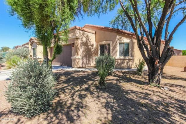 325 E Placita Nubes Blancas, Sahuarita, AZ 85629 (#21814322) :: Realty Executives Tucson Elite