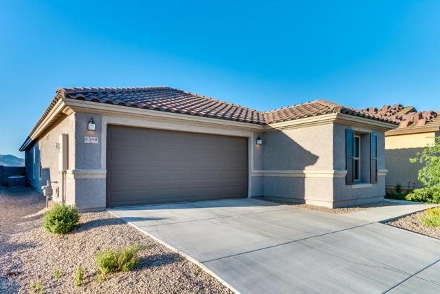 8580 W Amazilia Place, Tucson, AZ 85757 (#21814351) :: My Home Group - Tucson