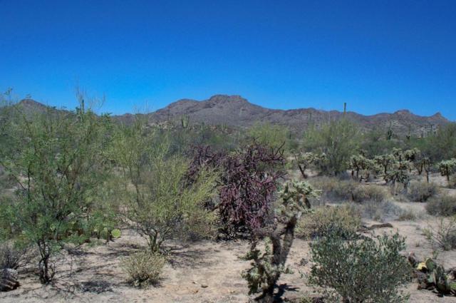 13650 N Como Hills Drive, Tucson, AZ 85755 (#21814428) :: Realty Executives Tucson Elite