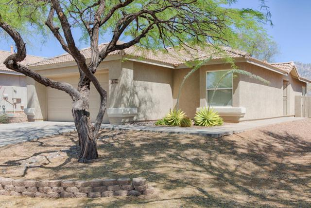 13206 N Classic Overlook Court, Oro Valley, AZ 85755 (#21814459) :: RJ Homes Team