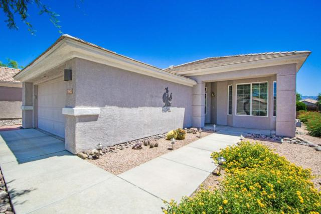 13452 N Heritage Canyon Drive, Marana, AZ 85658 (#21814472) :: RJ Homes Team