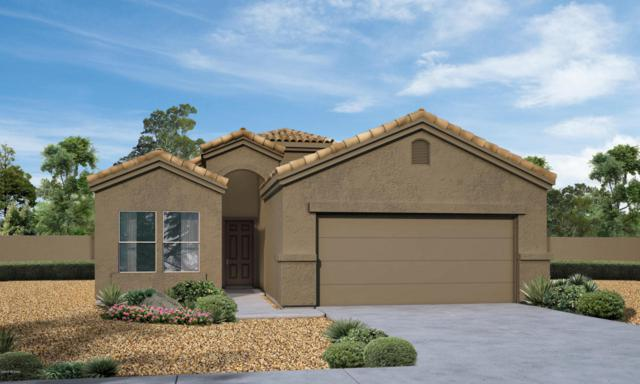 12888 N Benoni Court, Marana, AZ 85653 (#21814506) :: RJ Homes Team