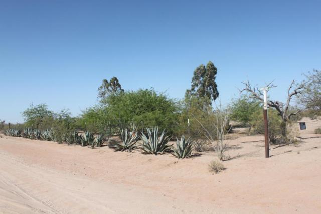 7918 N Shadows Desert Lane, Marana, AZ 85743 (#21814744) :: Keller Williams