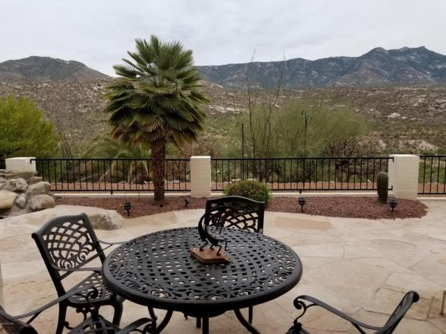 38305 S Canada Del Oro Drive, Tucson, AZ 85739 (#21815034) :: The KMS Team