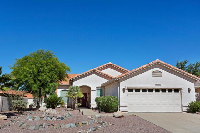 37980 S Mountain Site Drive, Tucson, AZ 85739 (#21815156) :: The KMS Team