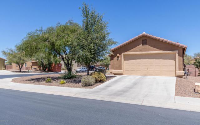 12910 N Pocatella Drive, Marana, AZ 85653 (#21815185) :: RJ Homes Team