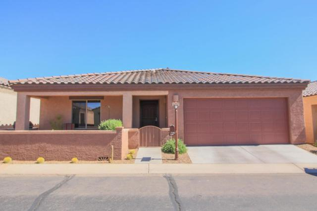 1154 W Calle De Sotelo, Sahuarita, AZ 85629 (#21815195) :: The KMS Team