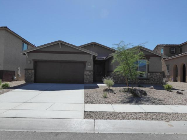 11129 N Gemma Avenue, Oro Valley, AZ 85742 (#21815243) :: The Josh Berkley Team