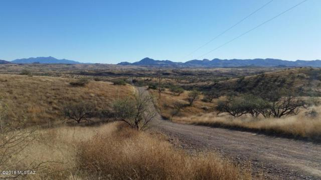 13350 W Ili Teka Road W #207, Arivaca, AZ 85601 (#21815479) :: Long Realty - The Vallee Gold Team