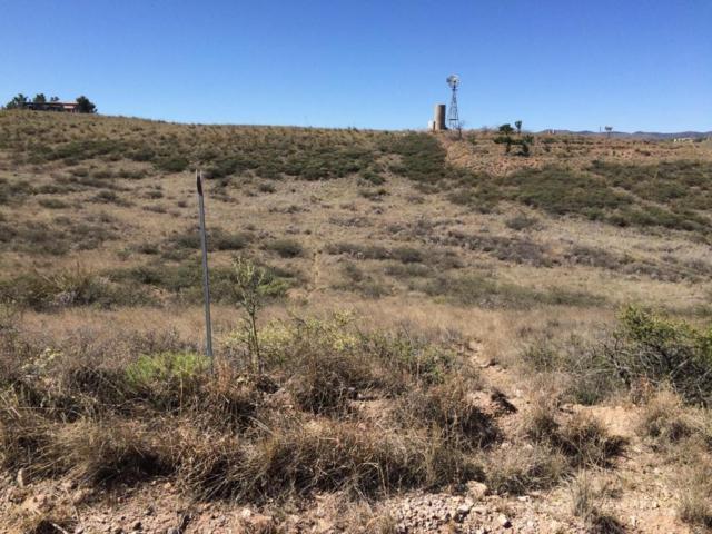 81 Broncho Trail #61, Sonoita, AZ 85637 (#21815748) :: Long Realty - The Vallee Gold Team