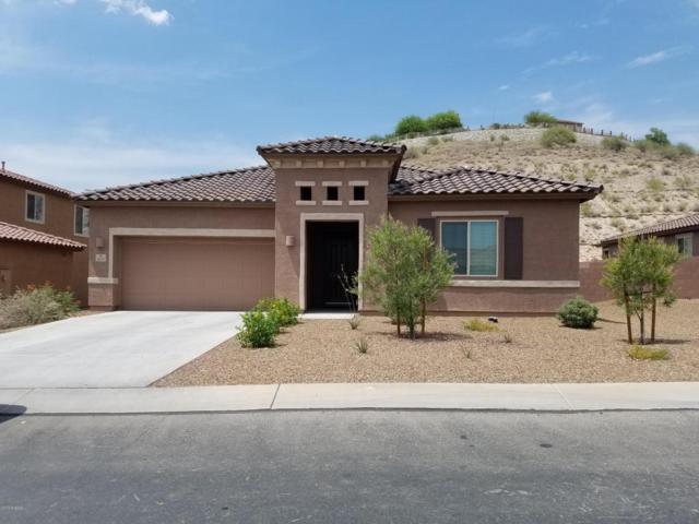 38905 S Running Roses Lane, Tucson, AZ 85739 (#21816009) :: RJ Homes Team