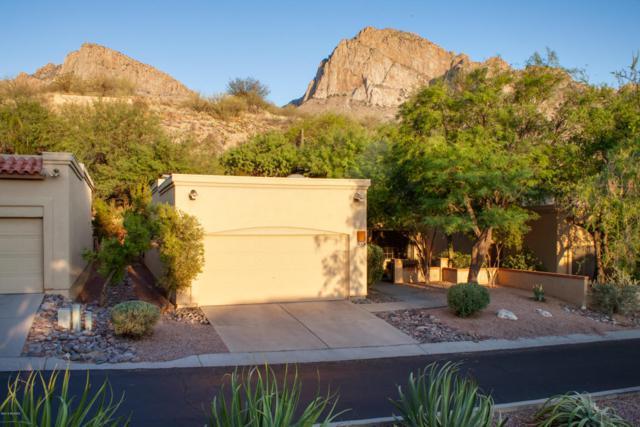 1237 E Camino Diestro, Oro Valley, AZ 85704 (#21816374) :: The KMS Team