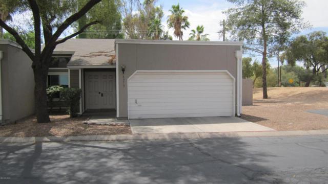 6373 N Willowbrook Drive, Tucson, AZ 85704 (#21816513) :: The KMS Team