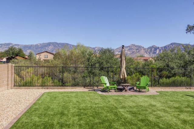 13204 N Deergrass, Oro Valley, AZ 85755 (#21816542) :: Long Realty - The Vallee Gold Team