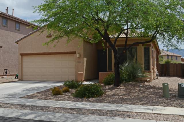 12924 N Carlsbad Place, Oro Valley, AZ 85737 (#21816619) :: The KMS Team