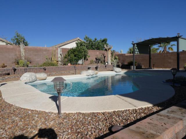 12686 N Owl Head Canyon Road, Marana, AZ 85658 (#21816752) :: Long Realty - The Vallee Gold Team