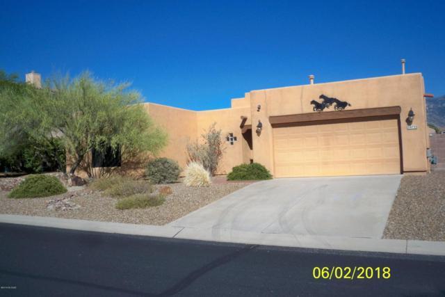 39733 Horse Run Drive, Tucson, AZ 85739 (#21816889) :: RJ Homes Team