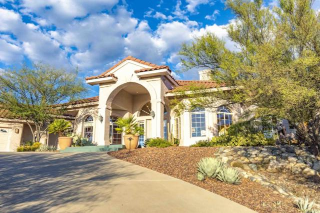 10840 N Summer Moon Place, Oro Valley, AZ 85737 (#21817034) :: Long Realty Company