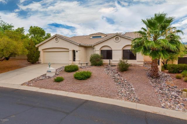 10660 N Sundust Court, Tucson, AZ 85737 (#21817039) :: My Home Group - Tucson