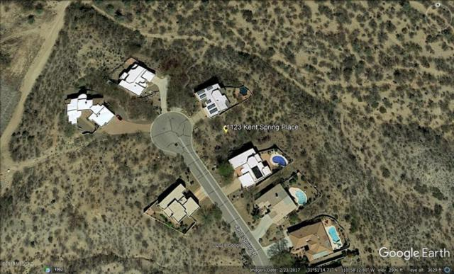 1123 S Kent Spring Place #106, Green Valley, AZ 85614 (#21817049) :: My Home Group - Tucson