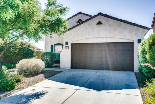 14427 S Avenida Castano, Sahuarita, AZ 85629 (#21817067) :: My Home Group - Tucson