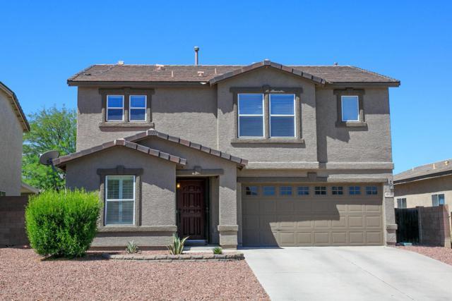 10127 N Blue Crossing Way, Tucson, AZ 85743 (#21817176) :: My Home Group - Tucson
