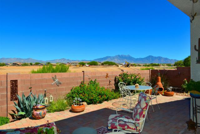 728 N Highlands Grove Lane, Sahuarita, AZ 85629 (#21817189) :: Long Realty Company
