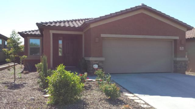 12088 N Meditation Drive, Marana, AZ 85658 (#21817269) :: Long Realty Company