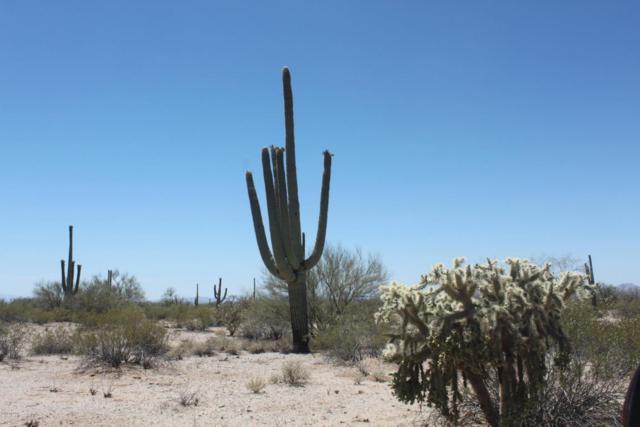 TBD N Wild Hardt Way, Marana, AZ 85658 (#21817321) :: The KMS Team