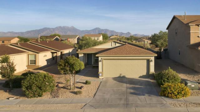 1095 W Calle Vista De Suenos, Sahuarita, AZ 85629 (#21817357) :: Long Realty Company