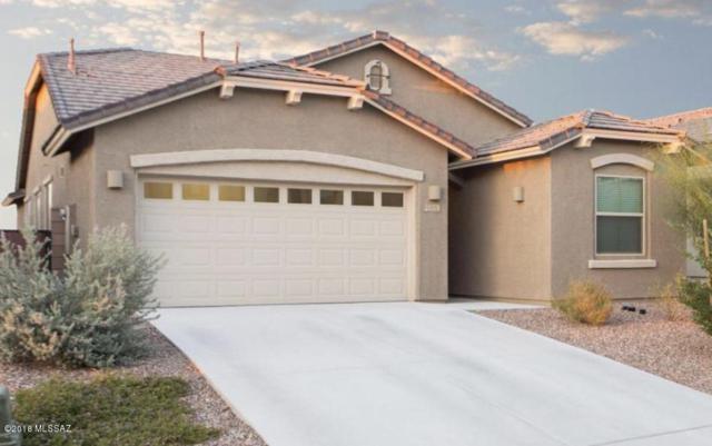 11379 E Squash Blossom Loop, Tucson, AZ 85747 (#21817378) :: Long Realty Company