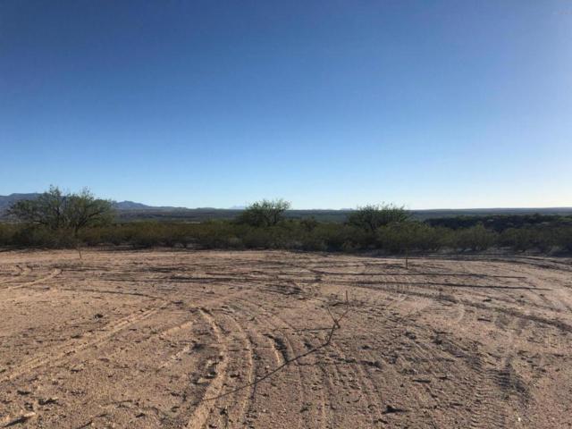 975 E Two Hills Back Road #2, Benson, AZ 85602 (#21817494) :: RJ Homes Team