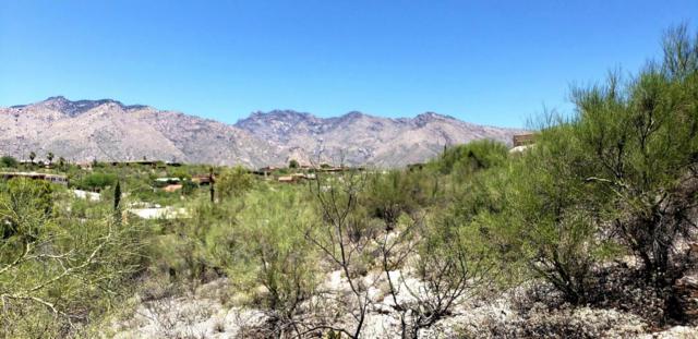 5579 N Cimarron Vista Court #, Tucson, AZ 85750 (#21818176) :: Long Realty - The Vallee Gold Team