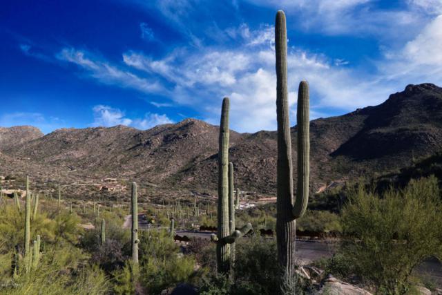 15580 N Dove Canyon Pass #297, Marana, AZ 85658 (#21818529) :: Long Luxury Team - Long Realty Company