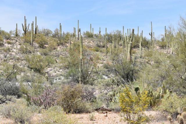 38615 S Carpenter Ranch Road, Marana, AZ 85658 (#21818802) :: Long Luxury Team - Long Realty Company