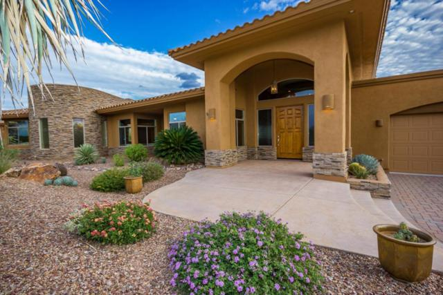 585 W Red Mountain Place, Oro Valley, AZ 85755 (#21819197) :: Long Luxury Team - Long Realty Company