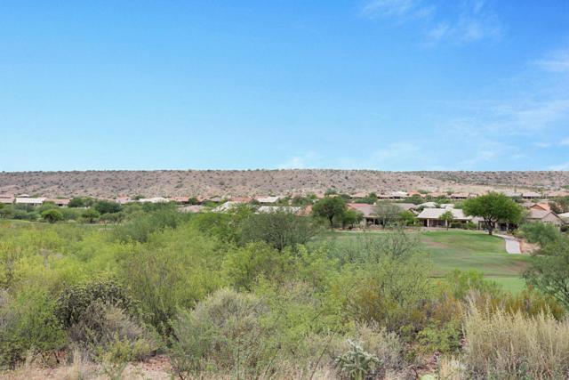37944 S Desert Bluff Drive, Tucson, AZ 85739 (#21819369) :: Long Luxury Team - Long Realty Company
