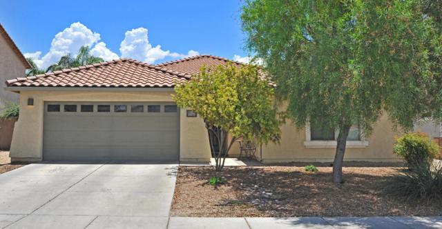 11075 W Denier Drive, Marana, AZ 85653 (#21819383) :: RJ Homes Team